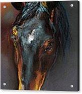 Vinnie Mustang Love Acrylic Print