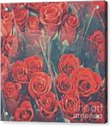 Vintage Background Of Roses In Bouquet Acrylic Print