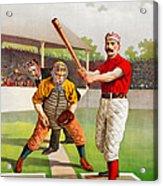 Vintage Baseball Print Acrylic Print
