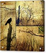 Vintage Birds Collage Acrylic Print