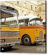 Vintage British Buses In Valetta Malta Acrylic Print