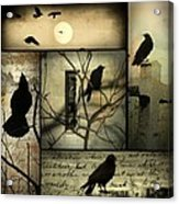 Vintage Crow Art Collage Acrylic Print