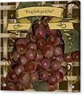 Vintage Fruit Of The Vine Acrylic Print