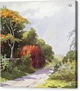 Vintage Manoa Valley Acrylic Print