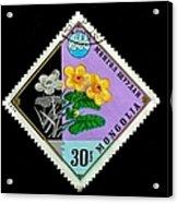 Medicinal Plants - Vintage Mongolia Stamp Acrylic Print
