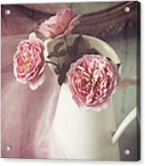 Vintage Pink Acrylic Print by Amy Weiss
