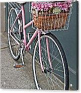 Vintage Pink Bicycle With Pink Flowers Art Prints Acrylic Print