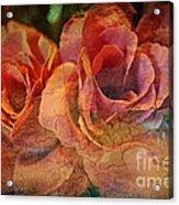 Vintage Roses Acrylic Print