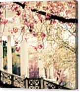 Grecian Garden Acrylic Print