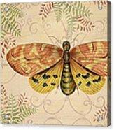 Vintage Wings-paris-c Acrylic Print