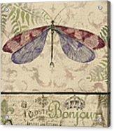 Vintage Wings-paris-f Acrylic Print