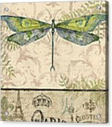 Vintage Wings-paris-g Acrylic Print