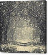 Vintage Winter Acrylic Print