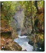 Vintgar Gorge Acrylic Print