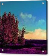 Violet Flats Acrylic Print