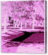 Violet Illusion Acrylic Print