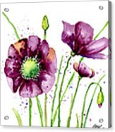 Violet Poppies Acrylic Print