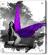 Violet Wings Acrylic Print by Diana Shively