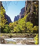 Virgin River In Zion National Park Acrylic Print