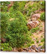 Virgin River - Utah Acrylic Print