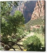 Virgin River Zion Valley Acrylic Print