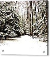 Virgin Snow Acrylic Print