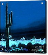 Vision Of A Desert Night Acrylic Print