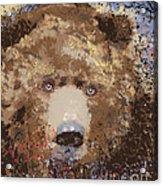 Visionary Bear Acrylic Print