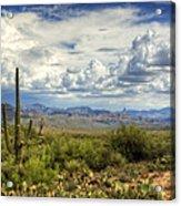 Visions Of Arizona  Acrylic Print by Saija  Lehtonen