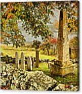 Visiting History Acrylic Print