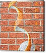 Vitamin C Wall Acrylic Print