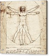 Vitruvian Man. 1492. Renaissance Art Acrylic Print