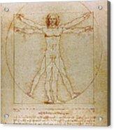 Vitruvian Man By Leonardo Da Vinci  Acrylic Print by Karon Melillo DeVega