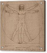 Vitruvian Man  Acrylic Print by War Is Hell Store