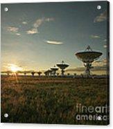 Vla At Sunset Acrylic Print