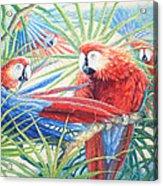 Voices Of The Amazon Acrylic Print