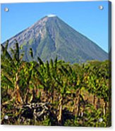 Volcan Concepcion Nicaragua Acrylic Print