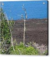 Volcano Rocks - Ile De La Reunion - Reunion Island Acrylic Print by Francoise Leandre