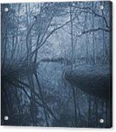 Waccasassa River Acrylic Print