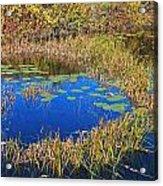 Wachusett Meadows 2 Acrylic Print