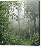 Waft Of Mist - Shenandoah Park Acrylic Print