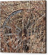 Wagon Wheel_7438 Acrylic Print
