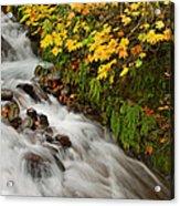 Wahkeena Falls At Columbia River Gorge In The Fall Acrylic Print