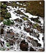 Wahkeena Falls Acrylic Print by Cari Gesch
