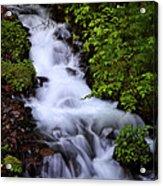 Wahkeena Falls In Oregon Acrylic Print