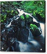 Wahkeenah Falls Columbia River Gorge Nsa Oregon Acrylic Print