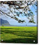 Waiahole Oahu Hawaii Acrylic Print