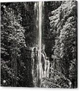Wailua Falls 3 Acrylic Print