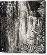 Wailua Waterfall 3 Acrylic Print