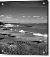 Waipapa Beach New Zealand Acrylic Print